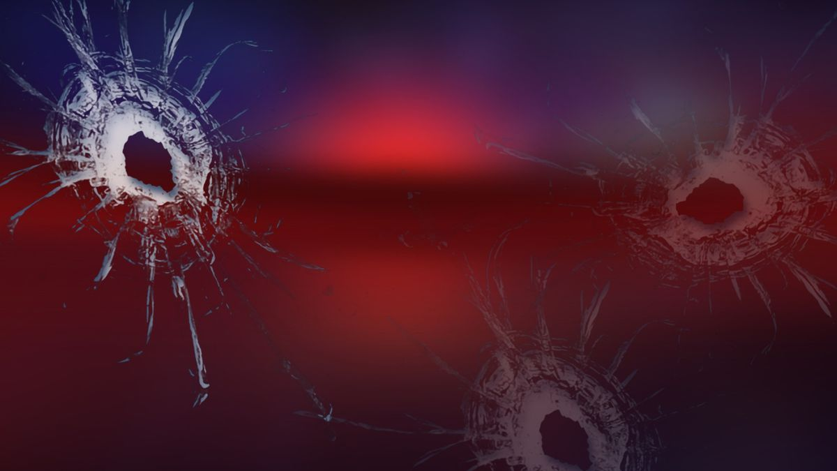 Local police say a man shot into an unoccupied vehicle.