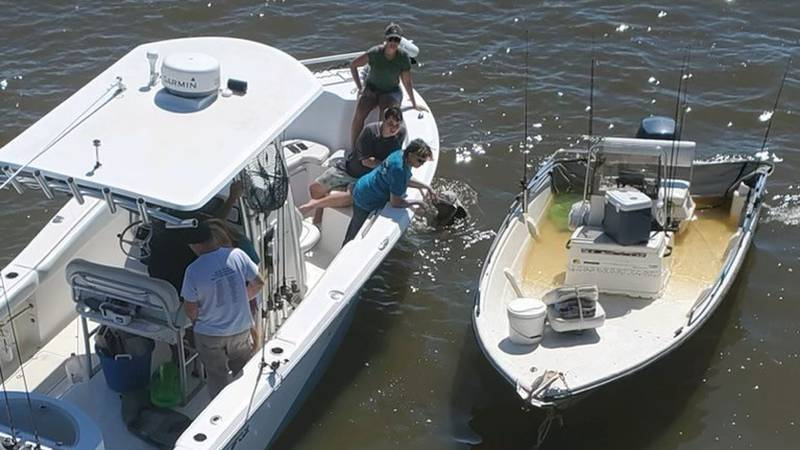 FCSO completes a water rescue of a family whose boat took on water. The family was brought to...