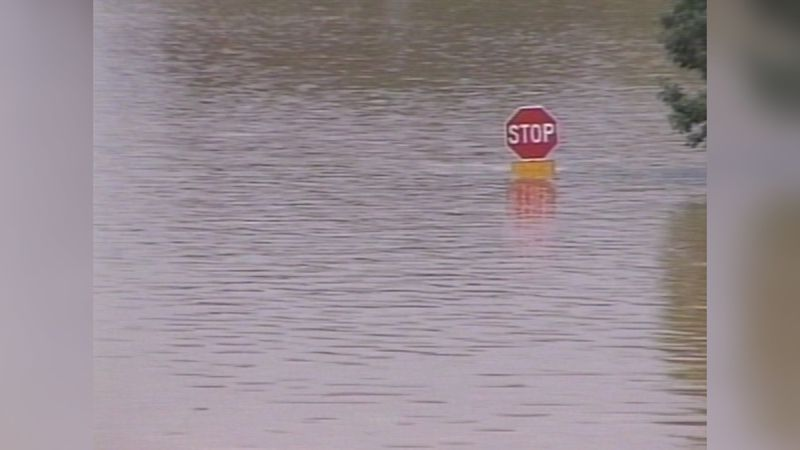 1994 Flint River Flood