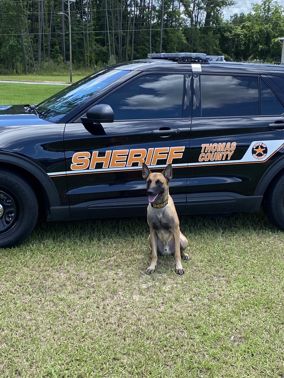 K9 Flex with the Thomas County Sheriff's Office will soon be getting new body armor to protect...