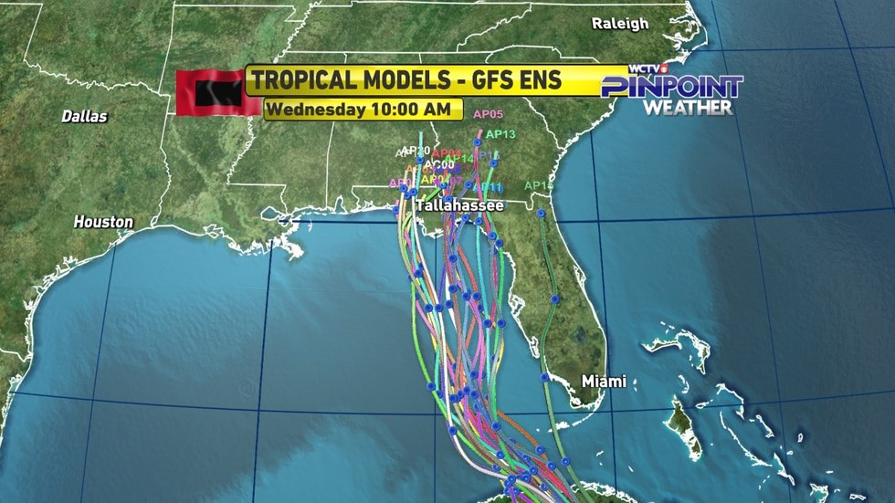 The American GFS model ensemble member guidance on Tropical Storm Elsa's track as of Monday...