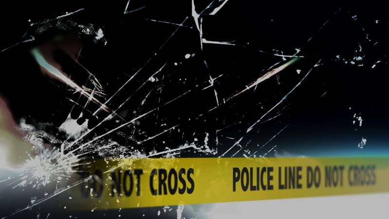 A cyclist was killed following a collision with an SUV Saturday in Wakulla County.