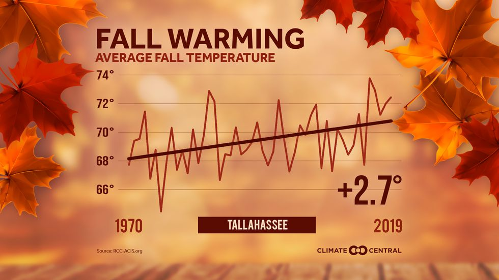 The graph shows the average fall temperatures (September through November) in Tallahassee, Fla....