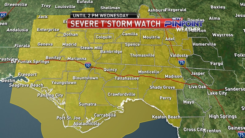 The SPC issued a severe thunderstorm watch for most of the Big Bend and South Georgia until 2...