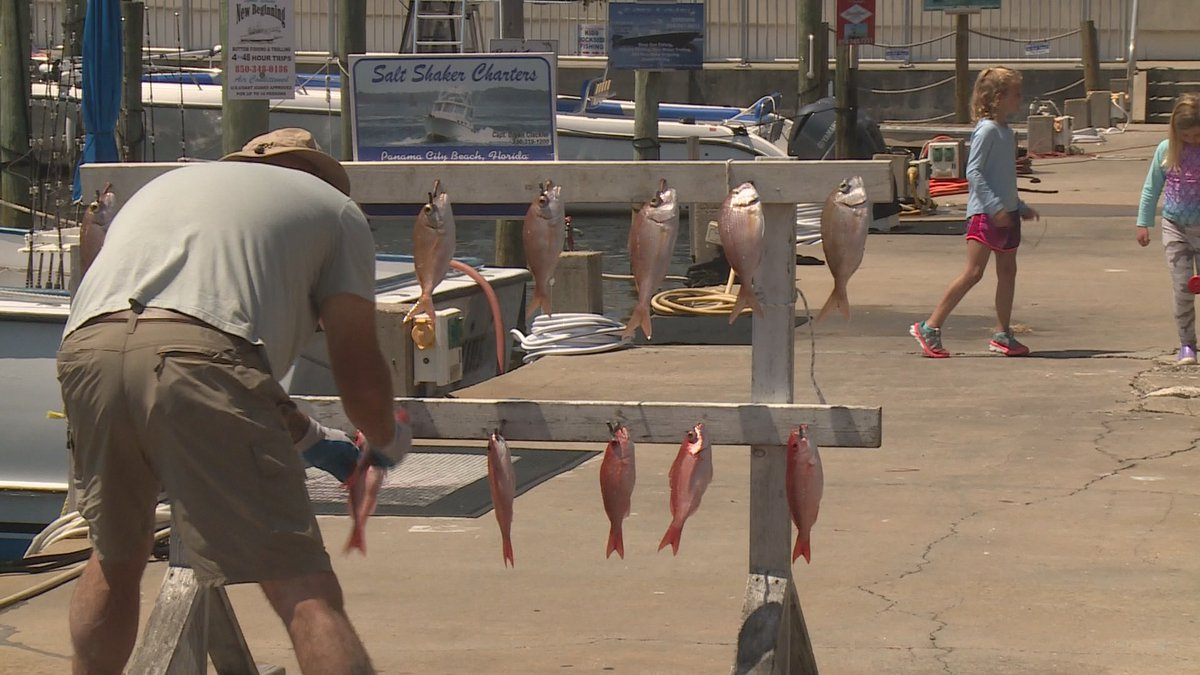 The recreational red snapper season kicked off Friday.
