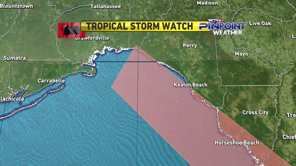 Tropical storm watches were issued for portions of the Big Bend coastline Monday morning as...