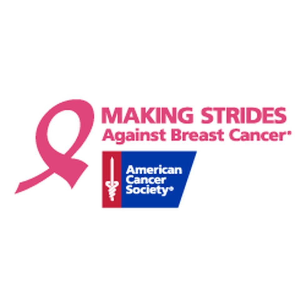 American Cancer Society Breast Cancer Logo