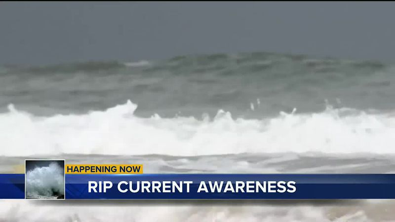 It's Rip Current Awareness Week in the Big Bend. Meteorologist Charles Roop talks about recent...