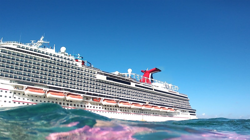 A Carnival spokesperson confirmed Brian Rice died on the Carnival Horizon following a six-day...