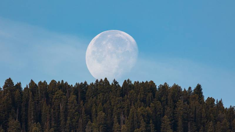 A full moon over Yellowstone National Park in Wyoming.