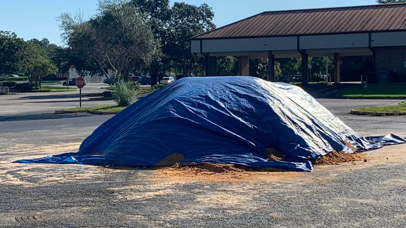 In an effort to prepare for Tropical Depression Fred, the City of Tallahassee and Leon County...