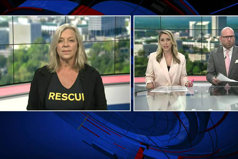 LeAnn Halsey from the International Rescue Committee shared how the Tallahassee community can...