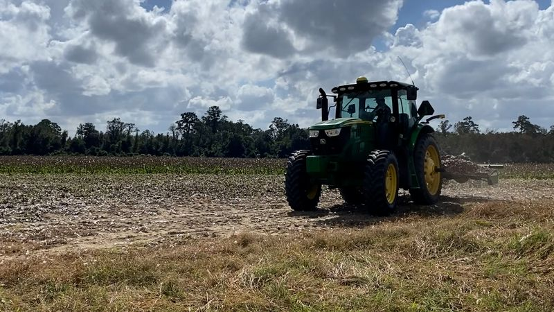 Nearby farmer Jared Vasulto says he was mowing cotton stalks around 2:45 p.m. Wednesday when...