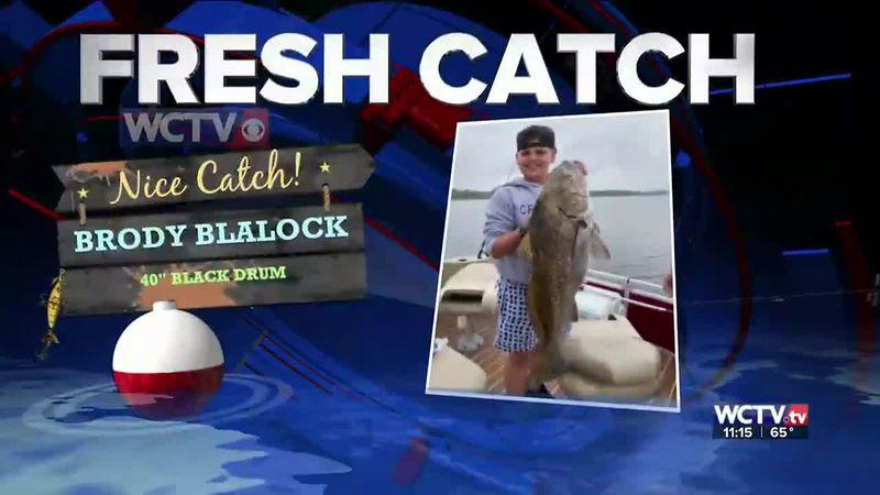 Fresh Catch 4/12/21