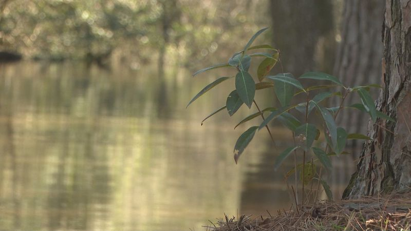 On Tuesday The Suwannee River Water Management District unanimously approved a permit which...