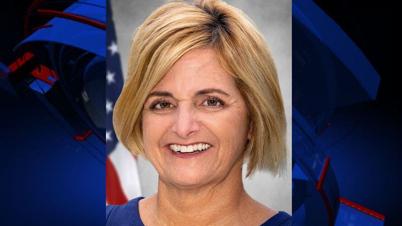 Loranne Ausley has won the seat for Florida State Senate District 3.