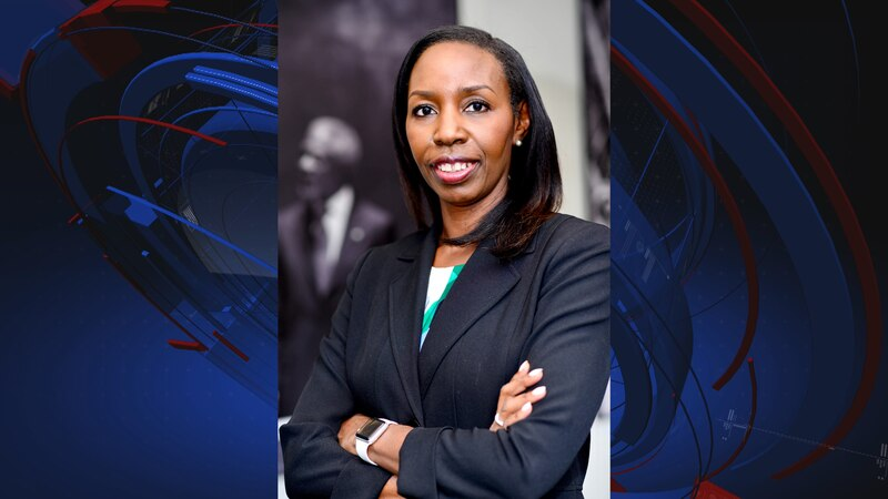 Florida A&M University announced Wednesday it has selected Mira Lowe as the new dean for its...